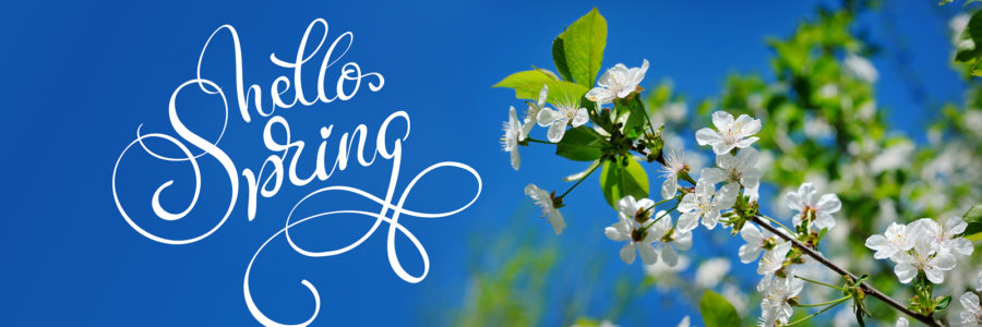 8 Tips to Ensure a Motivated and Productive Spring